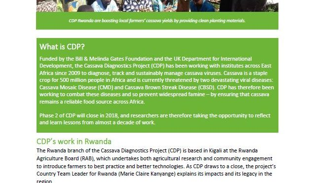 Cassava Diagnostics Project impacts: Rwanda