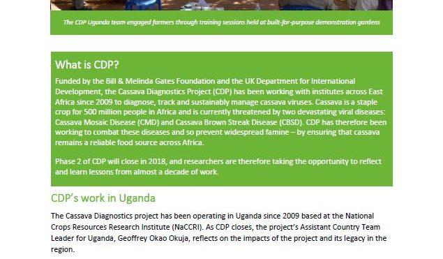 Cassava Diagnostics Project impacts: Uganda