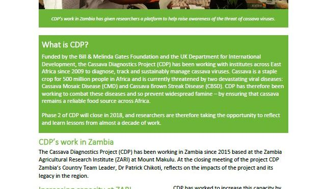 Cassava Diagnostics Project impacts: Zambia