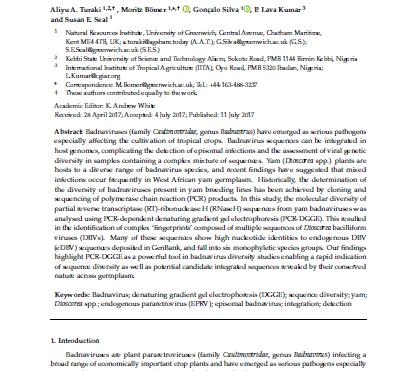 Unravelling complex mixtures of badnavirus sequences present in yam germplasm