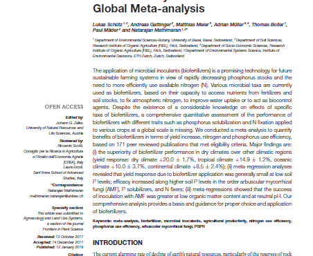 Improving crop yield and nutrient use efficiency via biofertilisation: a global meta-analysis