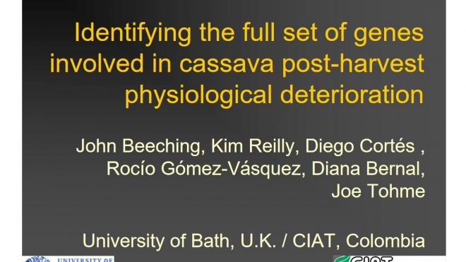 Identifying the full set of genes involved in cassava post-harvest physiological deterioration