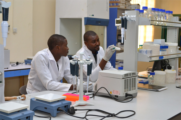 First molecular biology lab in Northern Nigeria now open