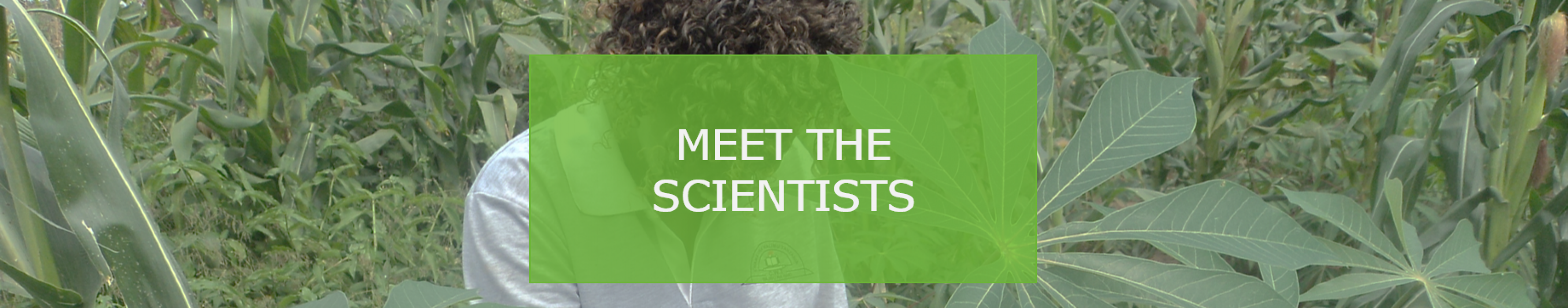 Meet the scientists